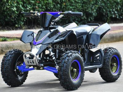 Mini Quad 1000 W eco, Speed in Schwarz / Blau