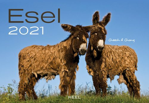 00 Kalender 2021 Esel Heel Verlag Serag AG 0